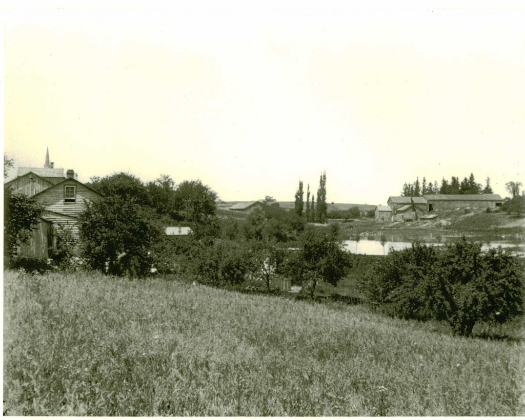 Contestoga, Ontario, showing village buildings and flax mill and pond.