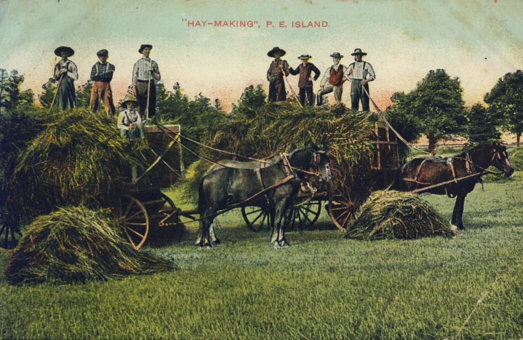 Hay Making in PEI. Source: PEIMHF Flickr Collection